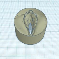 Impresiones 3D tapa de botella coño, 3d-3d-3d