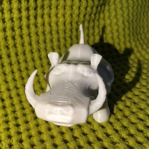 IMG_4431.JPG Download free STL file Warthy • Object to 3D print, Stenoxp