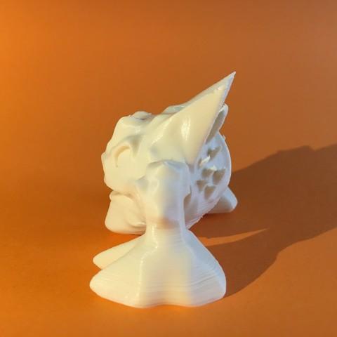 IMG_3341.JPG Download free STL file X0R0 • 3D printer design, Stenoxp