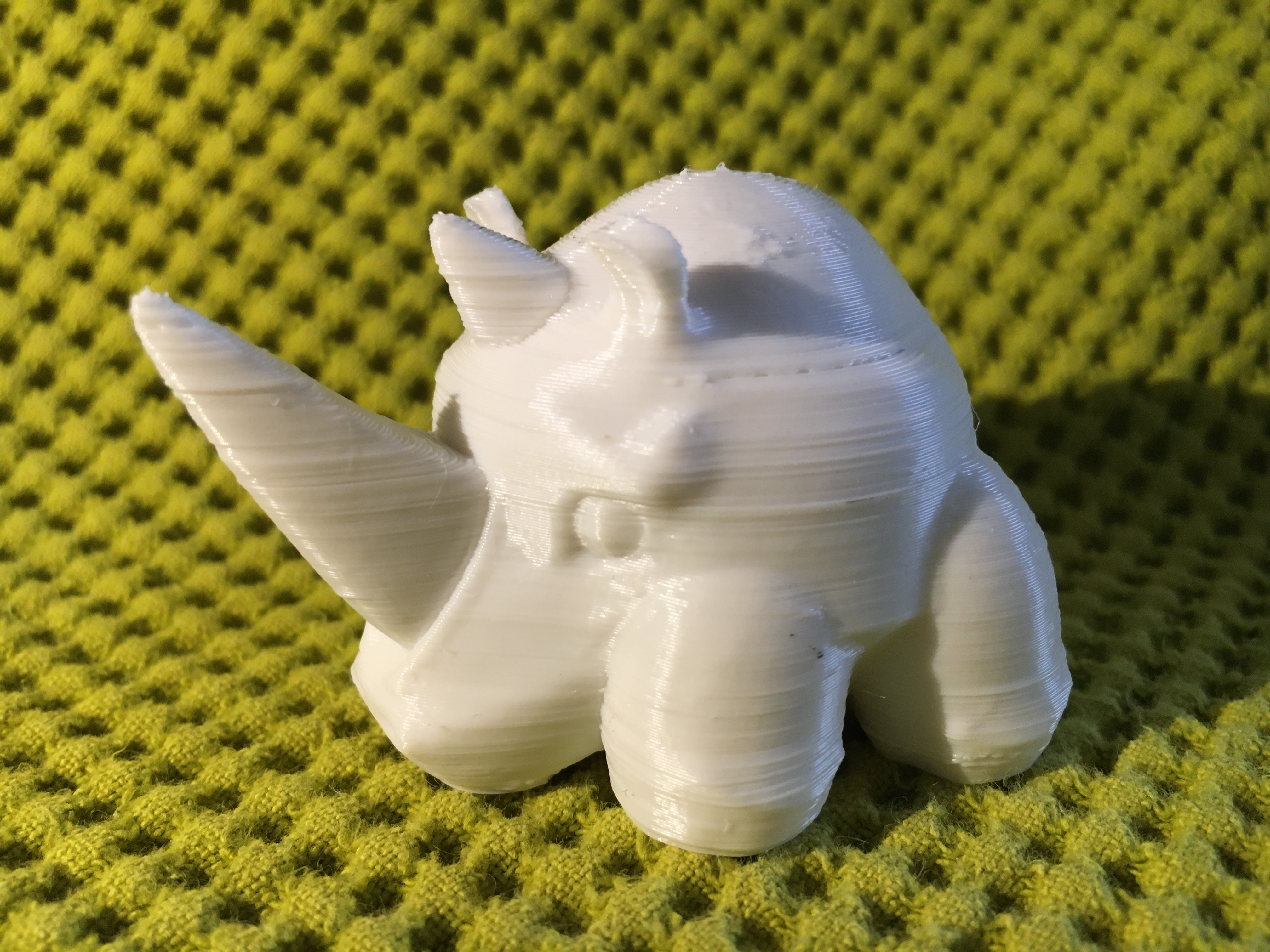 IMG_4428.JPG Download free STL file RHyno • 3D printer object, Stenoxp