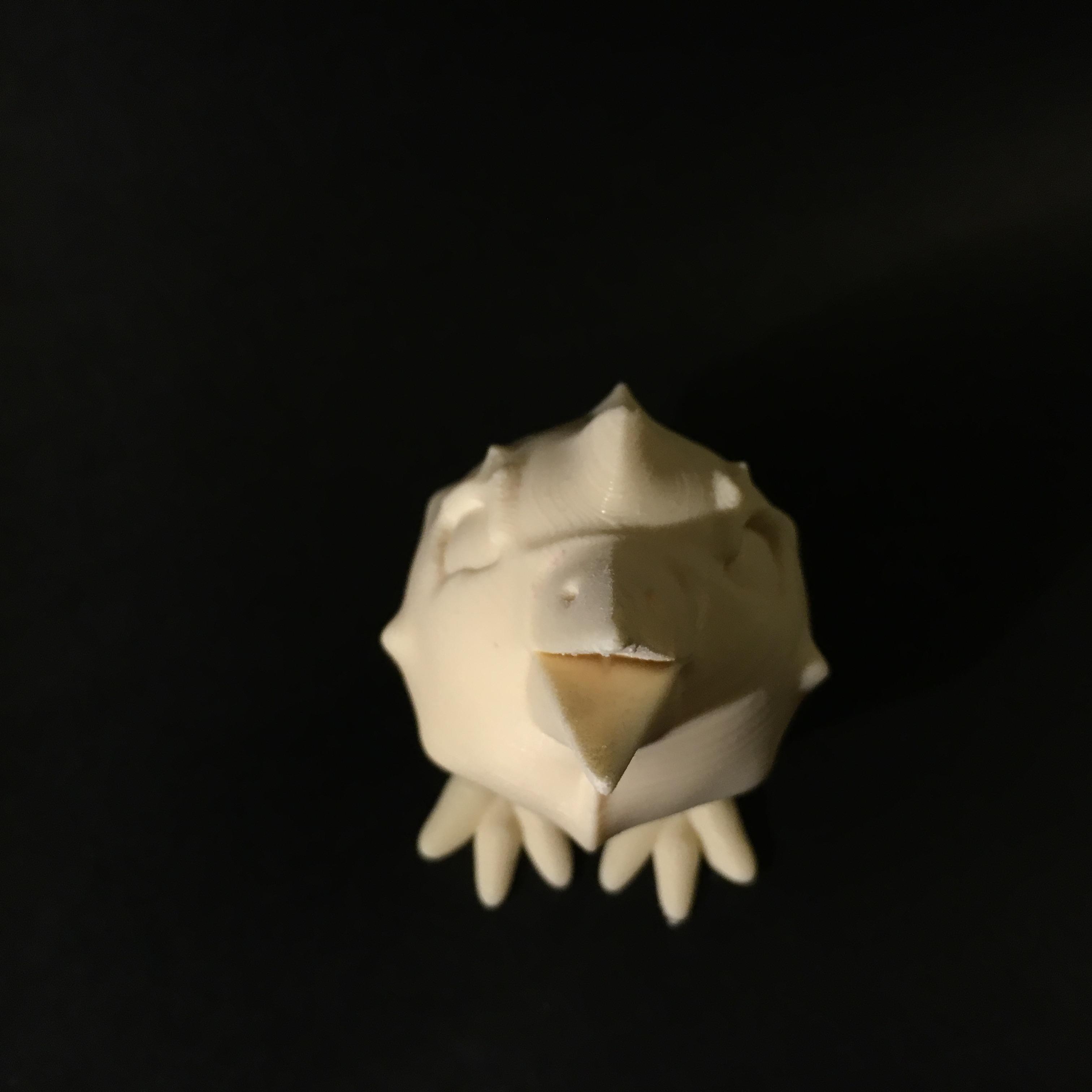 IMG_3374.JPG Télécharger fichier STL gratuit Kiwy • Design pour impression 3D, Stenoxp