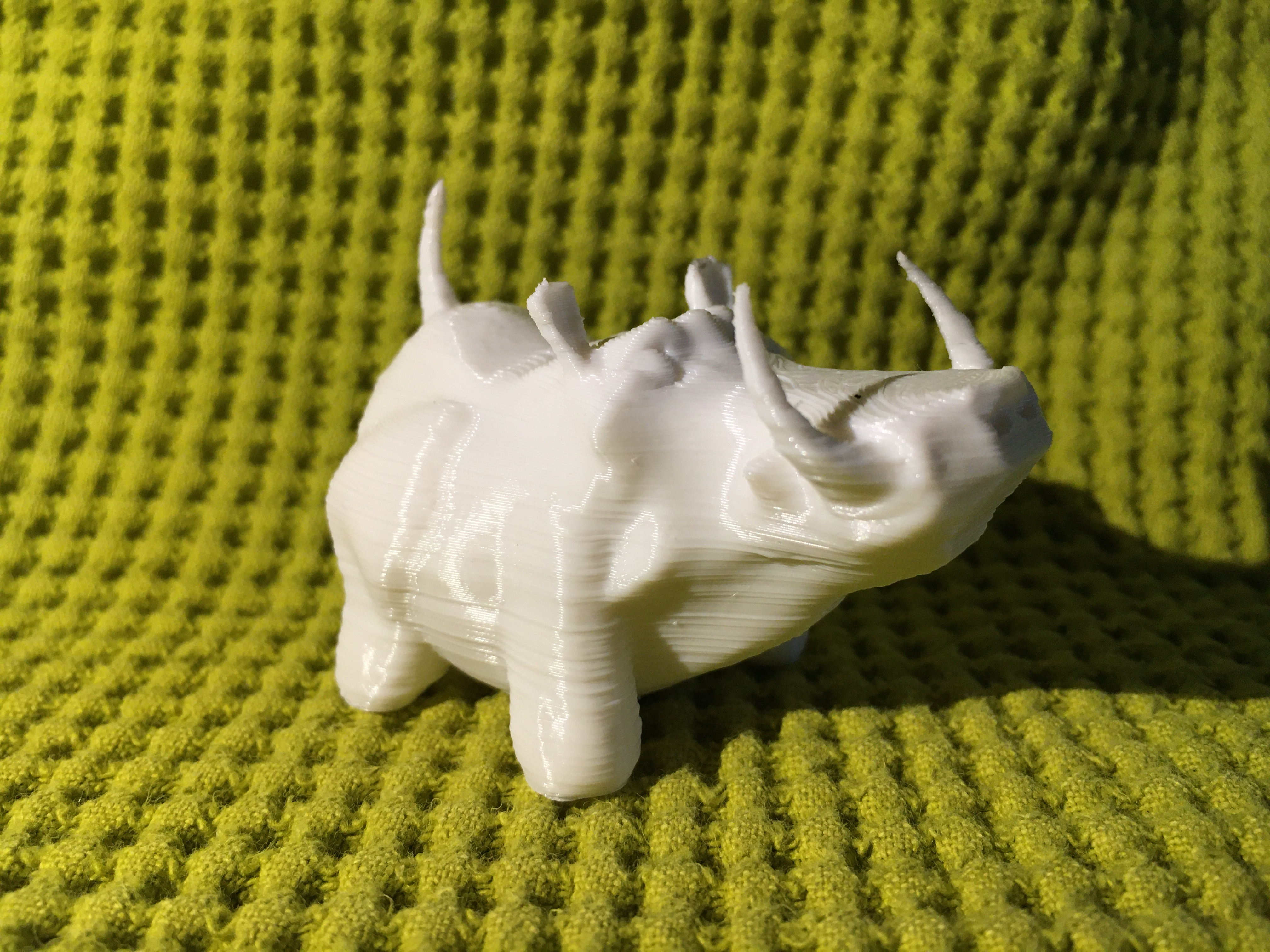 IMG_4432.JPG Download free STL file Warthy • Object to 3D print, Stenoxp