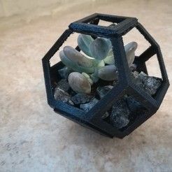 Free 3D print files Plantygon - Modular Geometric Stacking Planter for Succulents, NicoD96