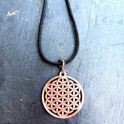 IMG_20200429_143438.jpg Download free STL file Flower of life pendant • Template to 3D print, Ted3D