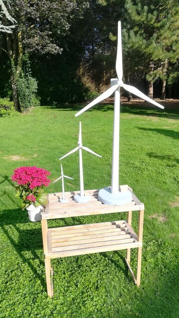 8c28847a7d27c097d0f14cb27b74c716_display_large.jpg Download free STL file Eolienne Wind turbine • 3D printing model, lulu3Dbuilder