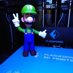 Free 3D printer designs Luigi from Mario games - Multi-color, ChristopheJolly
