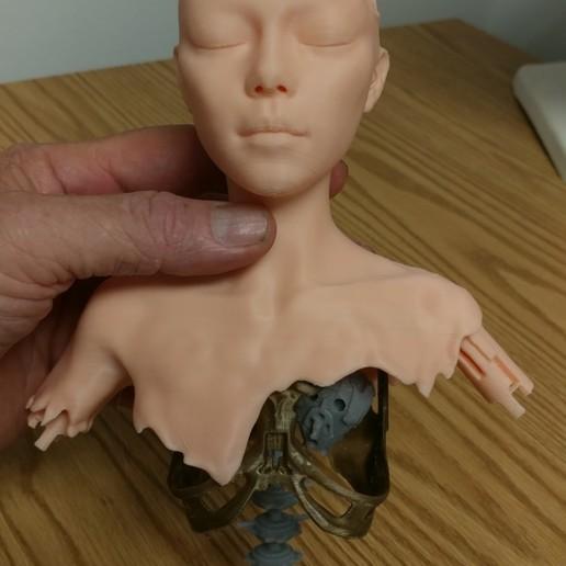 Download 3D printer designs Alita battle angel Junkyard model, paulienet