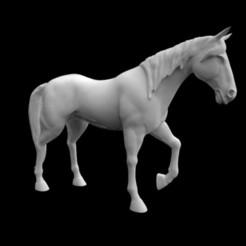 STL file horse, saeedpeyda