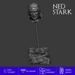 Download 3D printer files NED STARK HEAD, emanuelsko