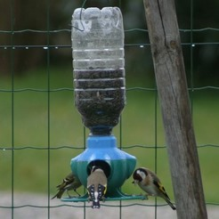 3D printer files Bird feeder, Epi-Team