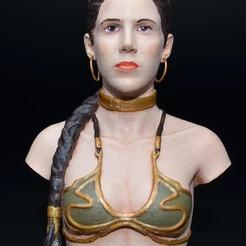 Free 3D print files Slave Leia, zinny