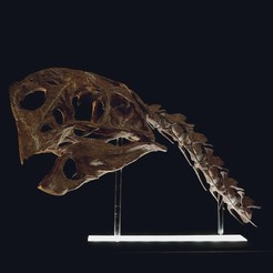 STL files Life size Citipati (Oviraptor) skull and cervical vertebrae, Inhuman_species