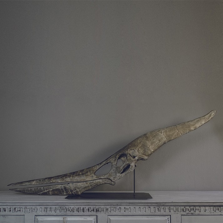 Ptero_cults.jpg Download STL file Pteranodon fossil skull life-size • 3D printer model, Inhuman_species