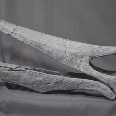 Closeup_facebook01.jpg Download STL file Pteranodon fossil skull life-size • 3D printer model, Inhuman_species