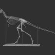 Archivos 3D Esqueleto T-rex de bebé de tamaño natural - Parte 07/10, Inhuman_species