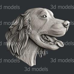 P365a.jpg Download STL file Dog Irish Setter • 3D printable design, 3dmodelsByVadim