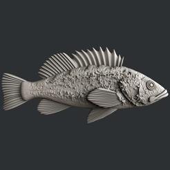 STL file Rockfish, burcel
