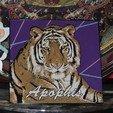 DSCN3314.JPG Télécharger fichier STL gratuit Apophis, In-Sync Exotics • Modèle pour impression 3D, JayOmega