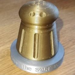 Télécharger fichier STL gratuit Salière, logo de Pass The SALT 2018, doegox