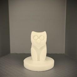 IMG_5202.jpg Download free STL file Simple Mini D&D Owl • 3D printer template, SimpleMiniatures