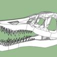 Download free 3D model dinosaur skull, grogro
