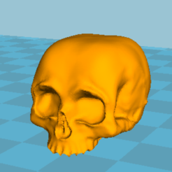Free 3D printer files human skull, grogro