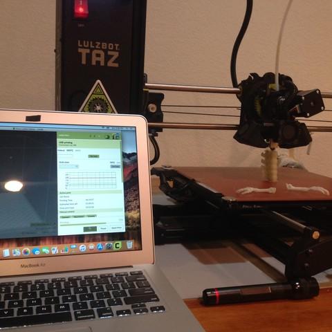 Free 3D printer designs T-Rex Skeleton - Leo Burton Mount, tokecale989