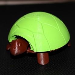 Free 3D print files Squishy Turtle, HellBoy