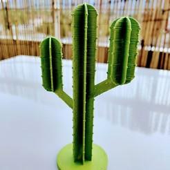 IMG_20200904_192909.jpg Télécharger fichier STL gratuit Cactus de bureau • Modèle pour impression 3D, Arkatz