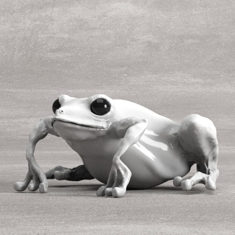 Modelos 3D para imprimir Frog, robertillin