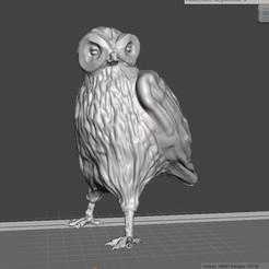 Imprimir en 3D Owl, robertillin