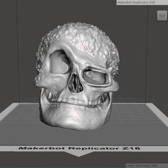 3D printing model Skull, robertillin