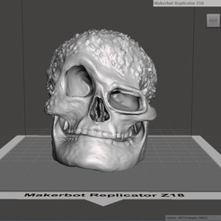 Objet 3D Crâne, robertillin
