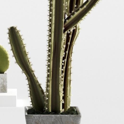 Download 3D printer templates High Definition Cactus!, robertillin