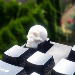 3D file Skull Keycap STL for Cherry MX 3D print model, solidcinu