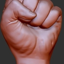 Download free STL file Hand - Fist • Template to 3D print, quangdo1700