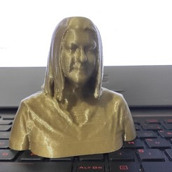 IMG_20200917_060128.jpg Download STL file 3D Portraits • Object to 3D print, tirawa
