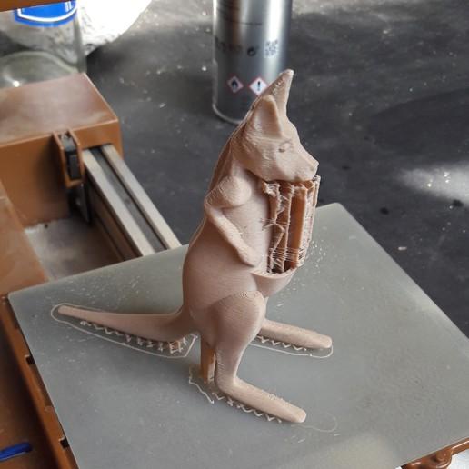 kang impression.jpg Télécharger fichier STL gratuit kangourou • Plan à imprimer en 3D, micaldez