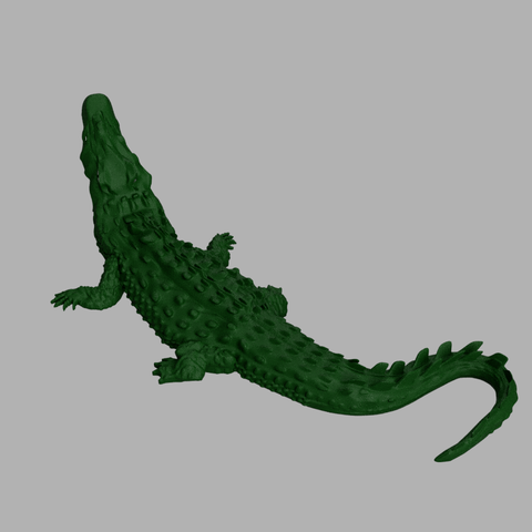 awalé croco 5.PNG Download free STL file Awalé crocodile • 3D printable template, micaldez