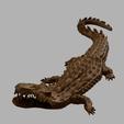 awalé_croco_v4_.png Download free STL file Awalé crocodile • 3D printable template, micaldez