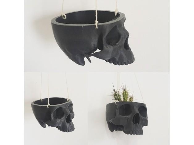 ccf0f810c04bdbf177e3621e83f9ff9d_preview_featured.jpg Download free STL file Skull Bowl Remix into Skull Hanging Planter / Pot • 3D print design, ranibizumab