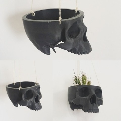 Download free 3D printer designs Skull Bowl Remix into Skull Hanging Planter / Pot, ranibizumab