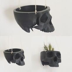 Free stl file Skull Bowl Remix into Skull Hanging Planter / Pot, ranibizumab