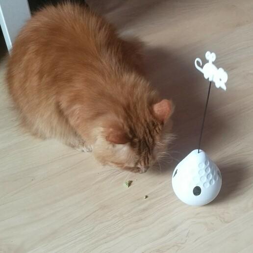 cat_treat_toy_v6-3.jpg Download STL file CAT TREAT TOY • 3D printer object, tom4z