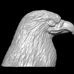 Imprimir en 3D Eagle head, RV3Design