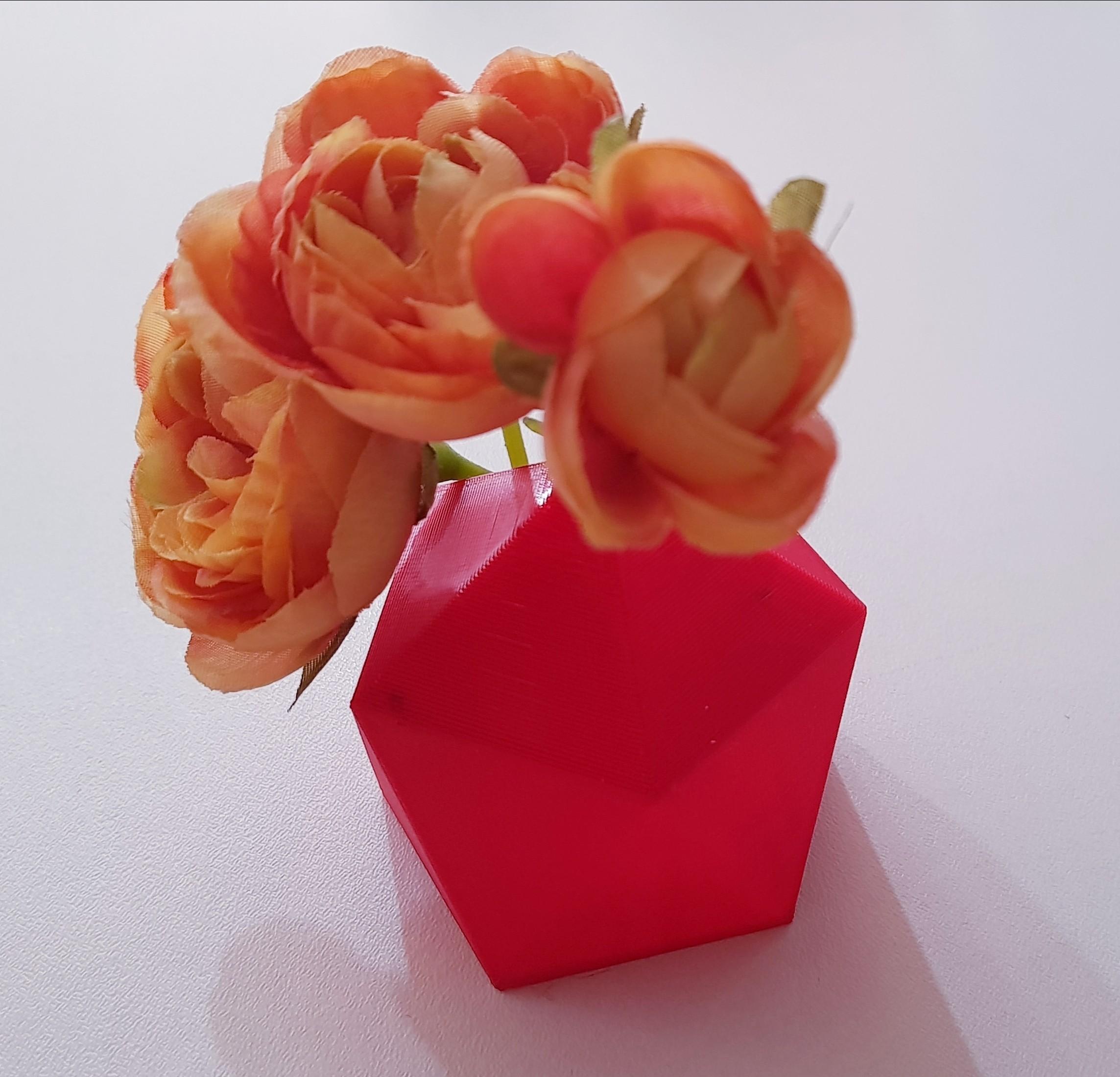 20180219_111906.jpg Download free STL file Mini planter • 3D printing design, solunkejagruti
