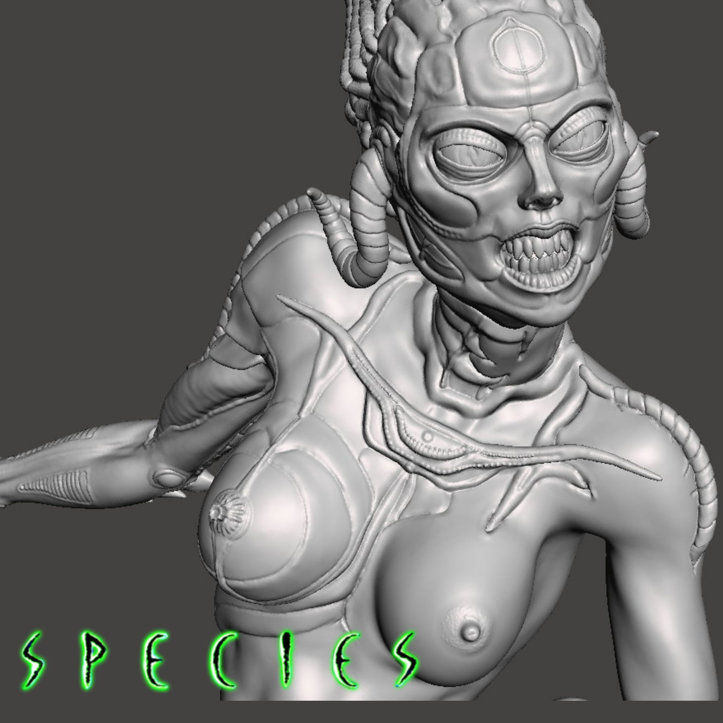 Image17.jpg Download STL file Alien Girl - SPECIES Part 1- by SPARX • 3D printable object, wikd2011