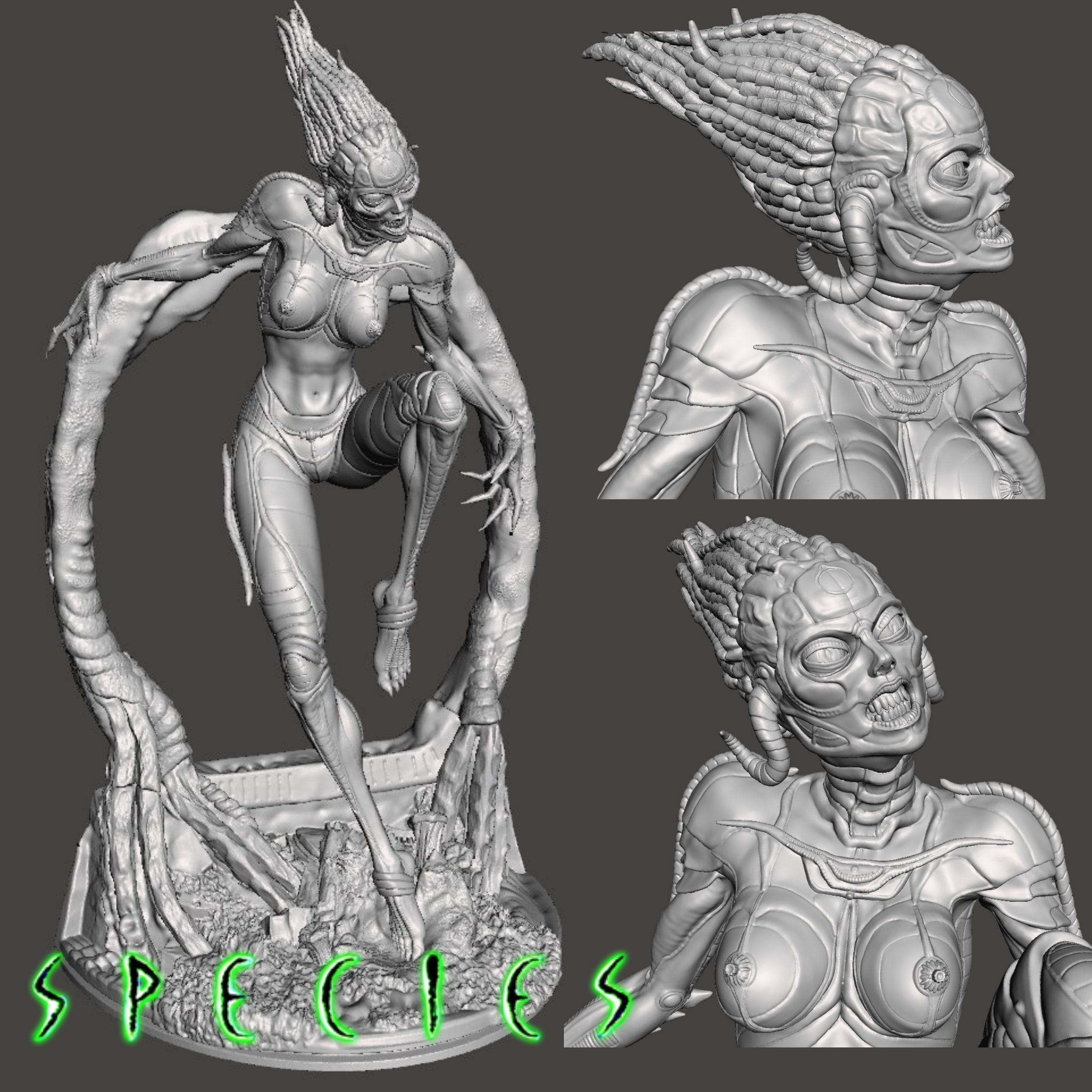 Image1.jpg Download STL file Alien Girl - SPECIES Part 1- by SPARX • 3D printable object, wikd2011