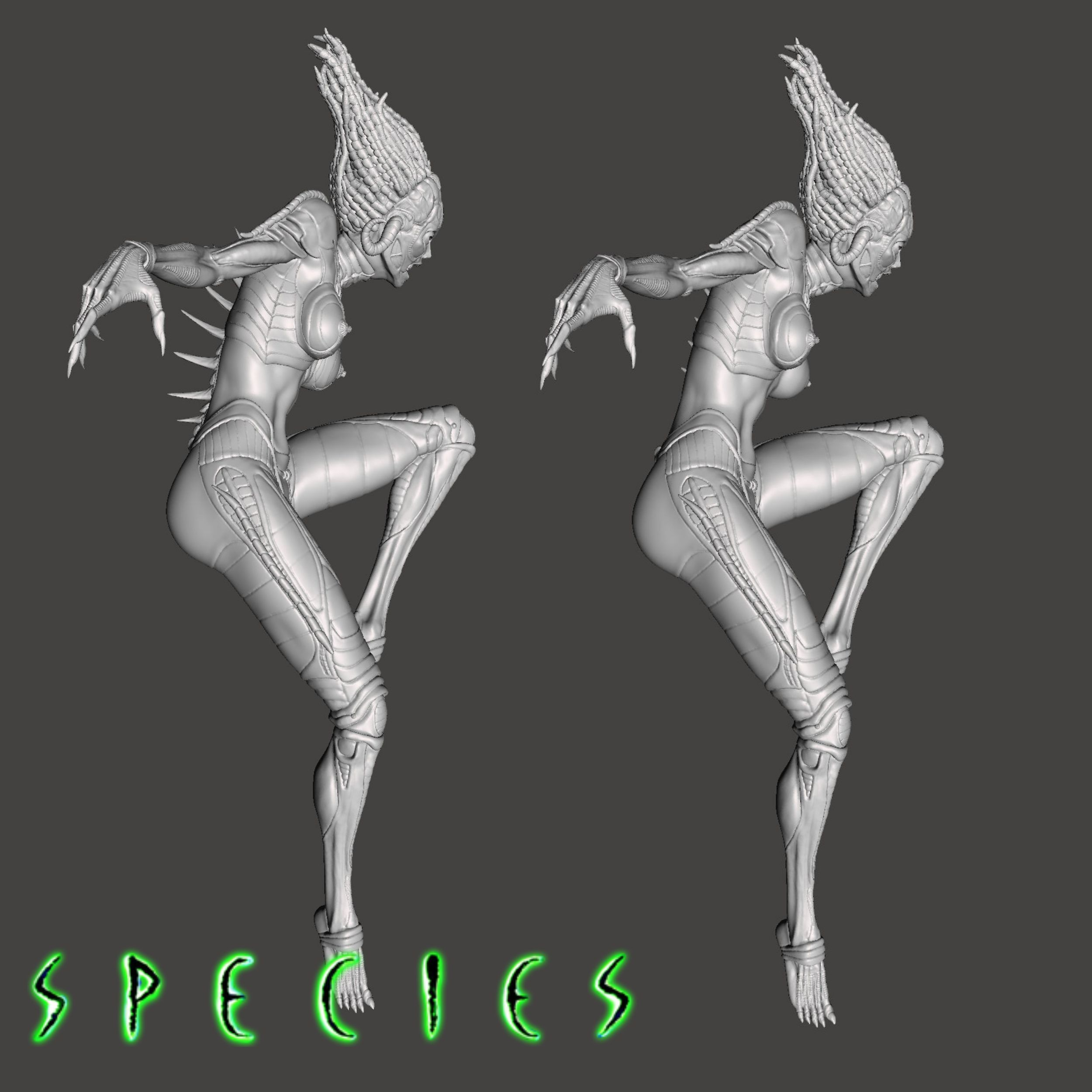 Image15.jpg Download STL file Alien Girl - SPECIES Part 1- by SPARX • 3D printable object, wikd2011