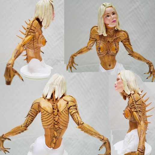 photo8.jpg Download STL file Alien Girl - SPECIES Part 1- by SPARX • 3D printable object, wikd2011